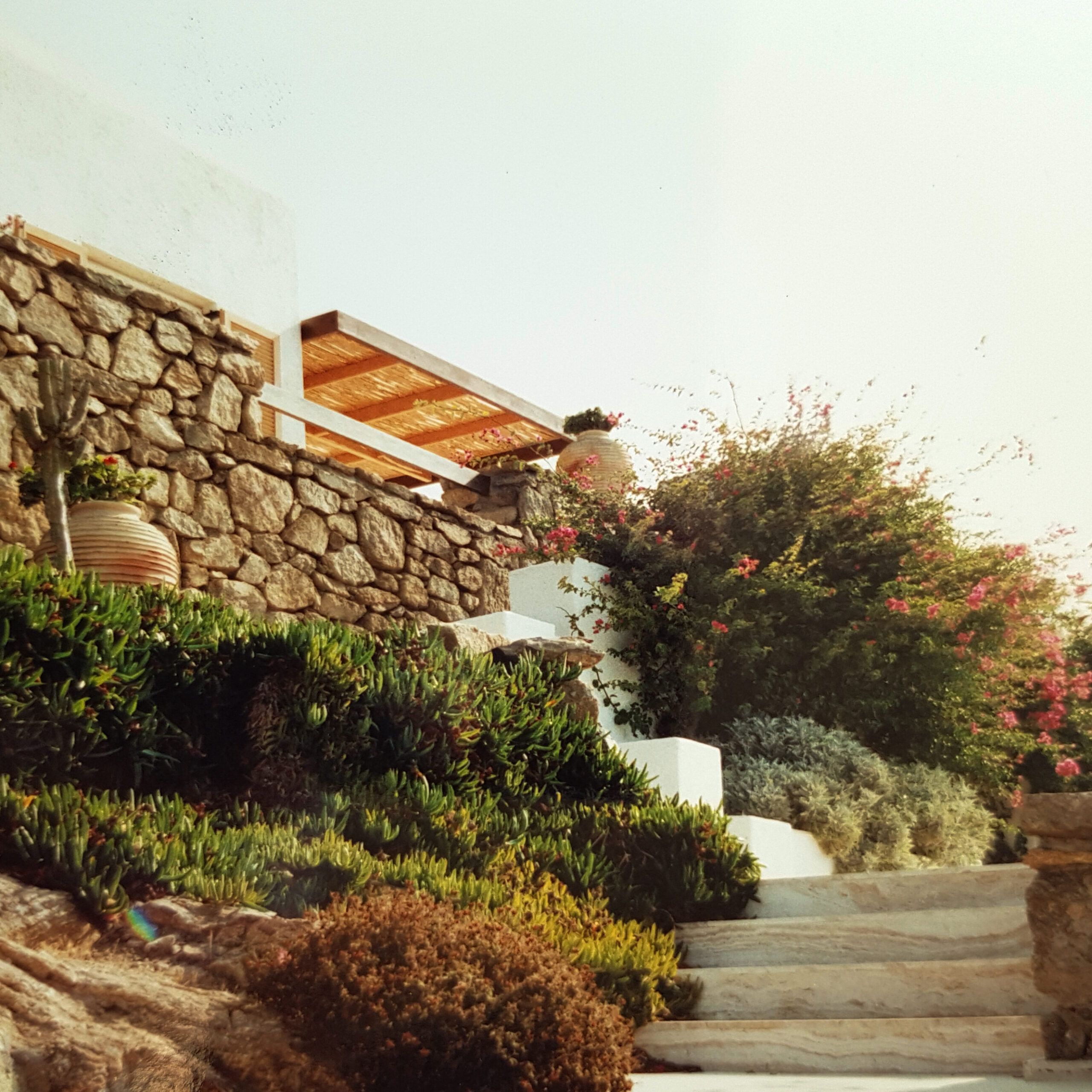 exceptionally maintained garden of Mykonos
